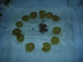 Las 12 uvas